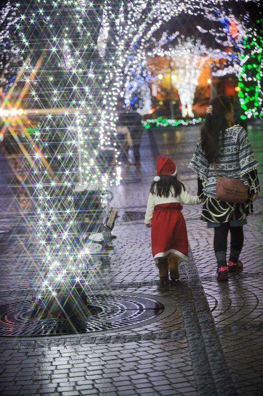 クリスマスイルミネーション@京セラ本社 其の一_f0032011_15363435.jpg