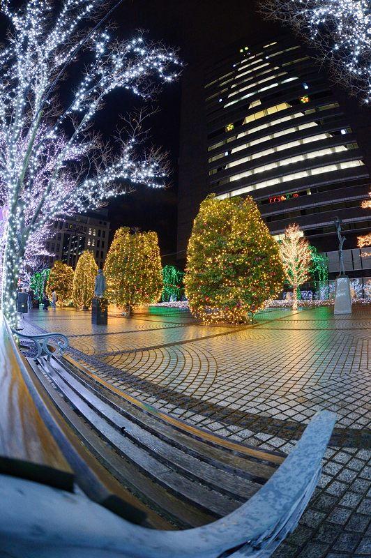 クリスマスイルミネーション@京セラ本社 其の一_f0032011_1537417.jpg