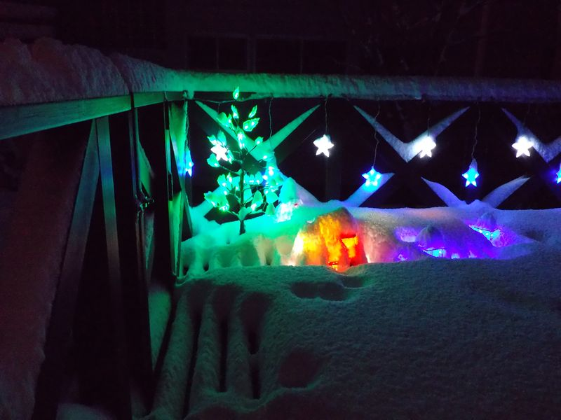 ホワイト・クリスマス確定_c0025115_20385315.jpg
