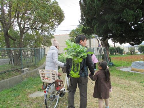 大根の収穫です(^o^)_f0079749_14221985.jpg