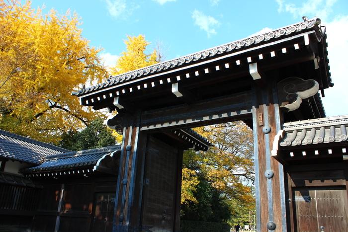 京都御苑_e0232054_19515797.jpg