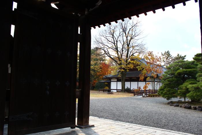 京都御苑_e0232054_20152656.jpg