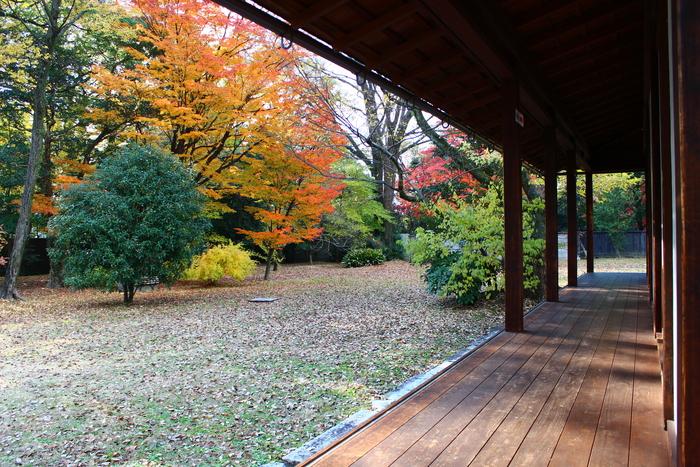 京都御苑_e0232054_20213542.jpg