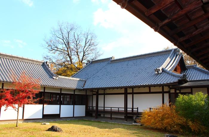 京都御苑_e0232054_20233864.jpg