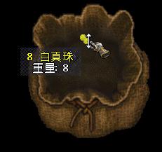 b0022669_250249.jpg