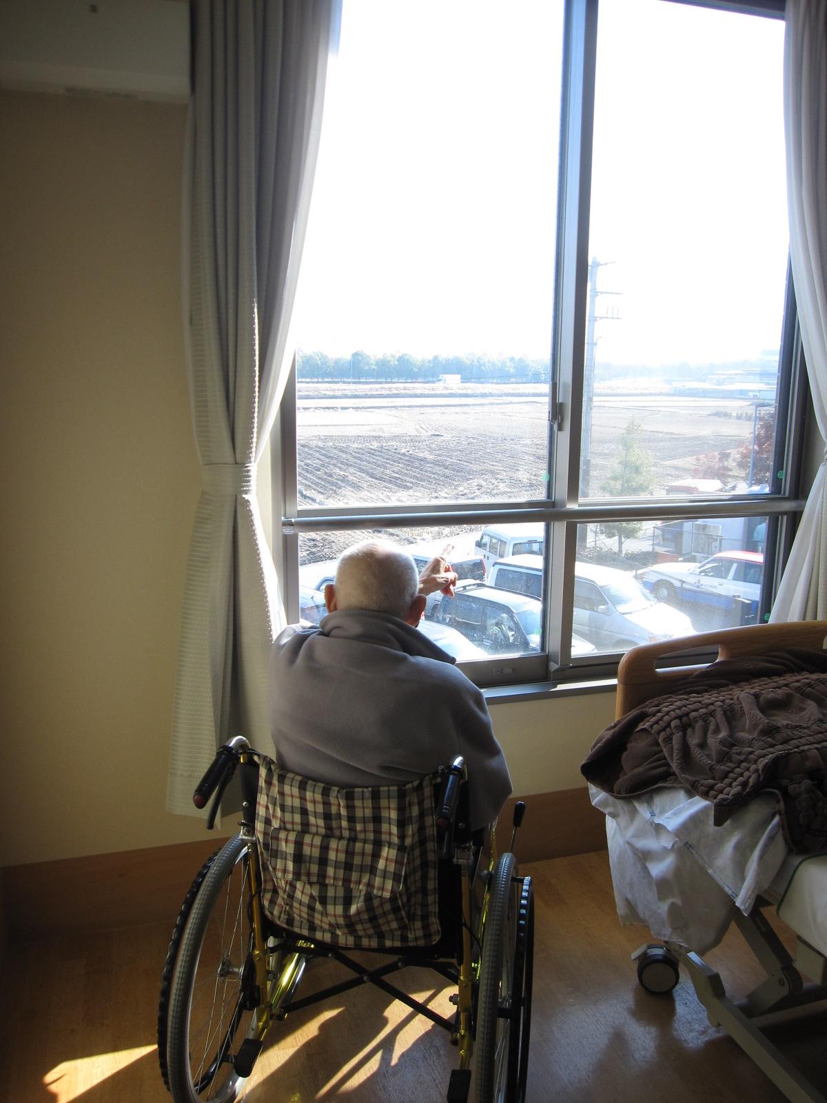 「心の安らぎ 窓から眺める景色」_e0191174_17533539.jpg