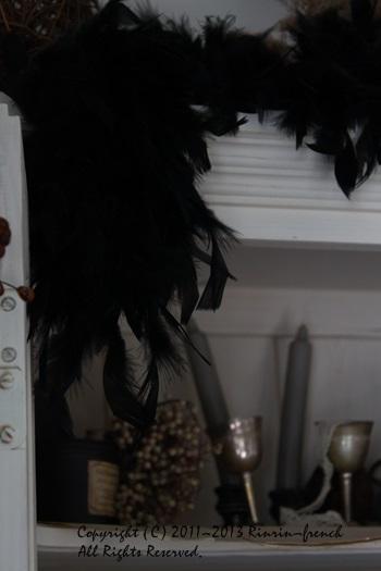 黒い羽根・・・・・_e0237680_12414088.jpg
