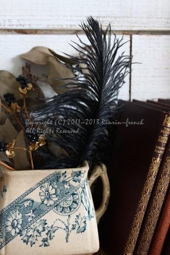 黒い羽根・・・・・_e0237680_12414856.jpg