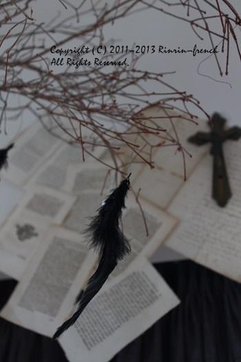 黒い羽根・・・・・_e0237680_1244582.jpg