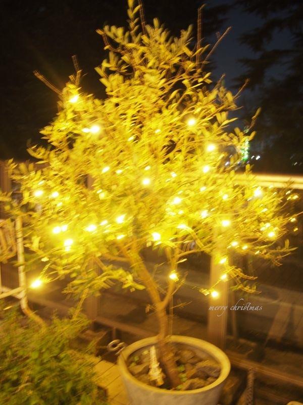 我が家のクリスマス…!_d0266681_18511265.jpg