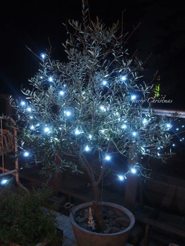 我が家のクリスマス…!_d0266681_18514936.jpg