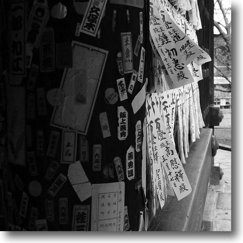 もう一つの京都_f0099102_17291745.jpg