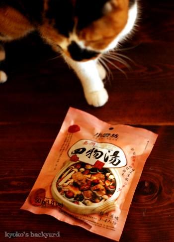 台湾の薬膳スープ、四物湯_b0253205_301515.jpg