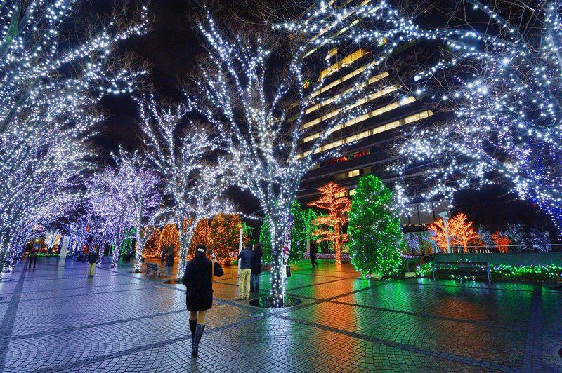 クリスマスイルミネーション@京セラ本社 其の二_f0032011_1742027.jpg