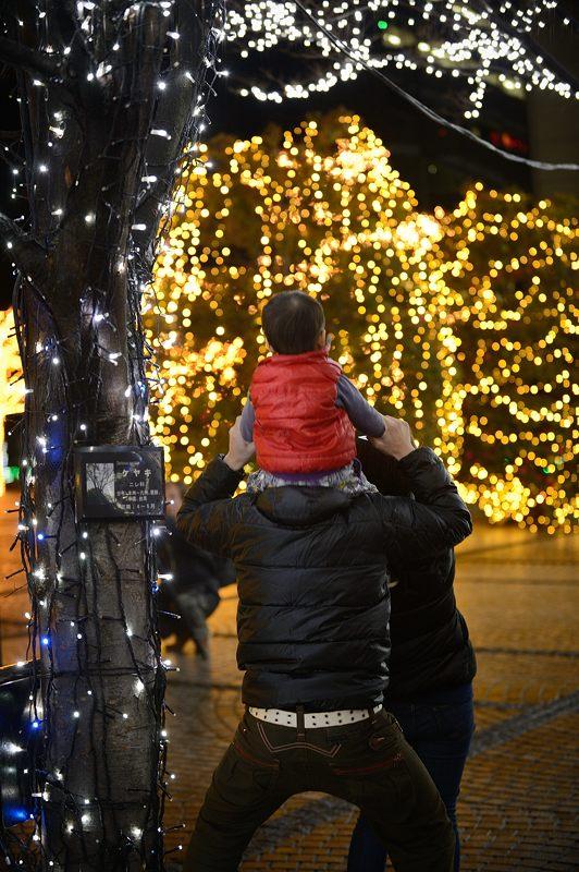 クリスマスイルミネーション@京セラ本社 其の二_f0032011_1744373.jpg
