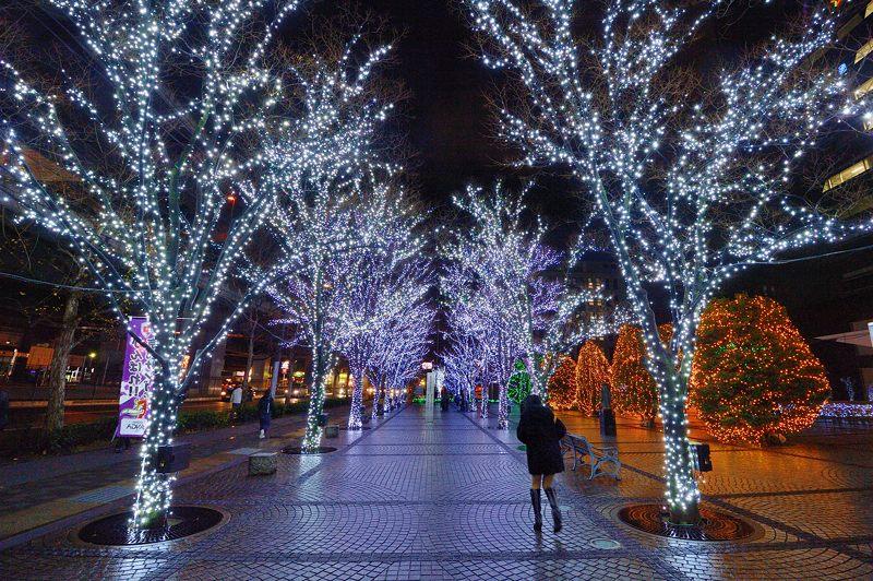クリスマスイルミネーション@京セラ本社 其の二_f0032011_1745537.jpg