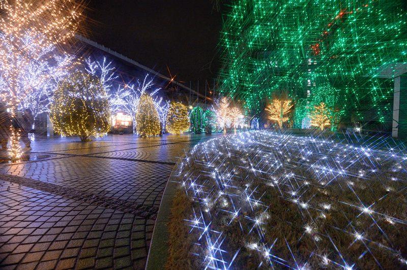 クリスマスイルミネーション@京セラ本社 其の二_f0032011_17462466.jpg