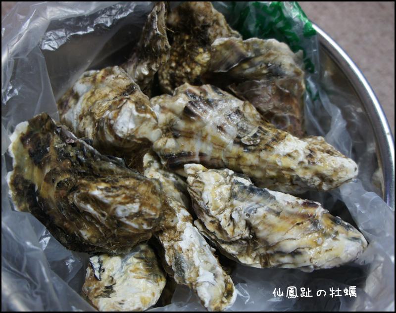 仙鳳趾の牡蠣_b0019313_1785880.jpg