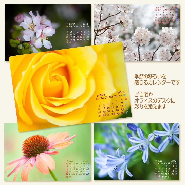 c0037519_933373.jpg