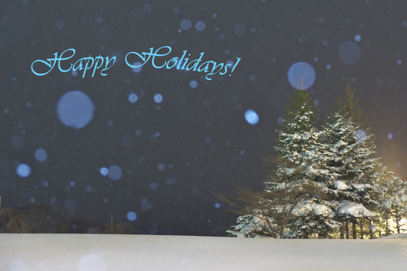 Happy Holidays!_c0167028_23265362.jpg
