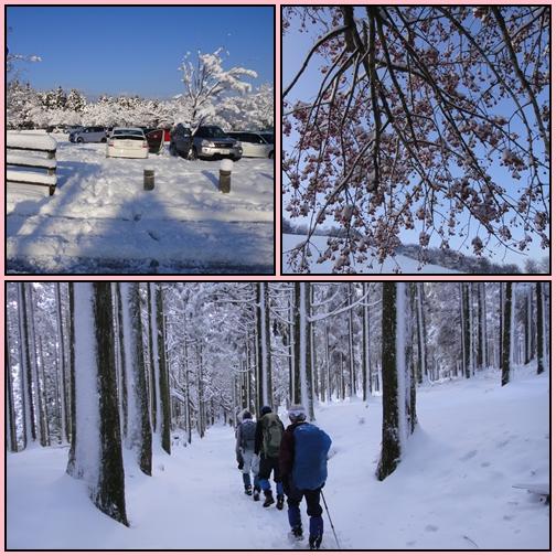 雪の英彦山・四王寺の滝_e0164643_16364998.jpg