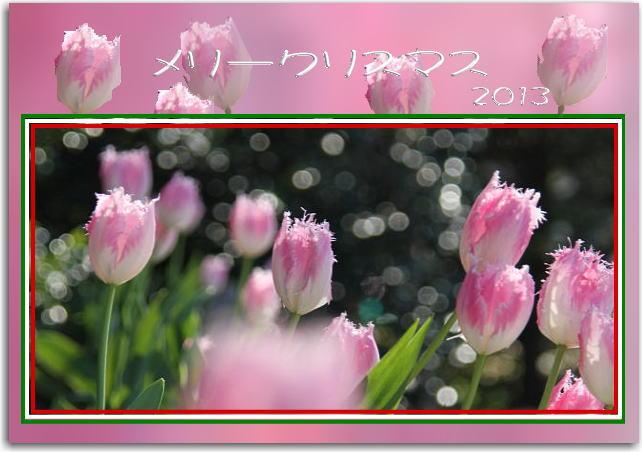 f0164592_184119100.jpg