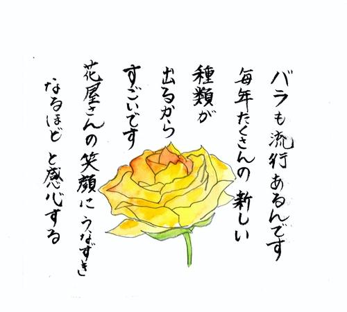 c0187600_1458471.jpg