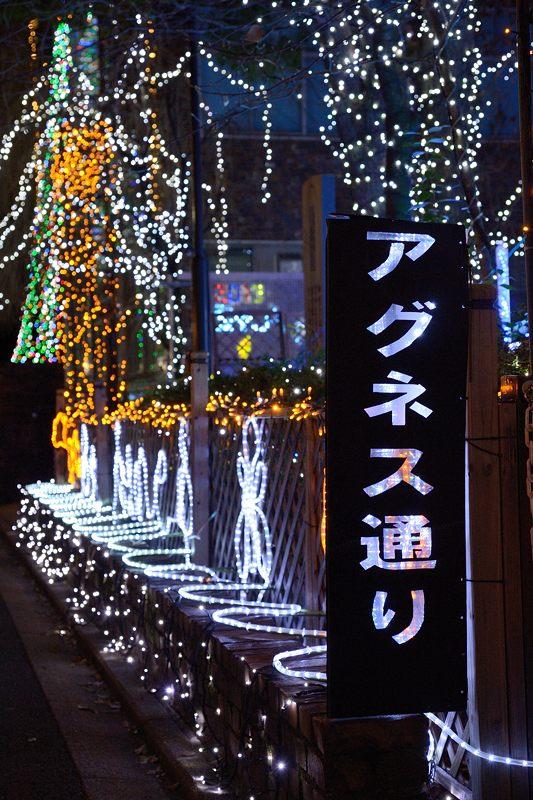 クリスマスイルミネーション@平安女学院_f0032011_19473618.jpg