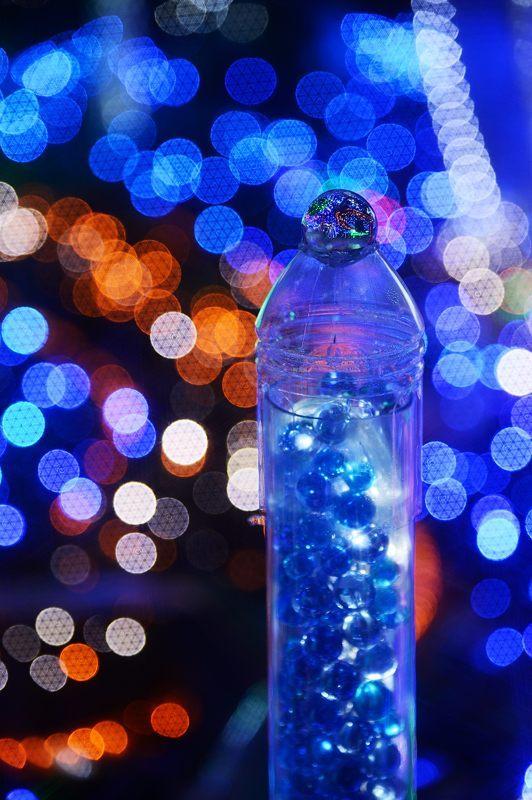 クリスマスイルミネーション@平安女学院_f0032011_1953149.jpg