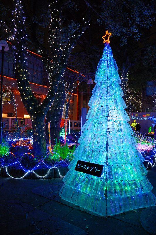 クリスマスイルミネーション@平安女学院_f0032011_1954021.jpg
