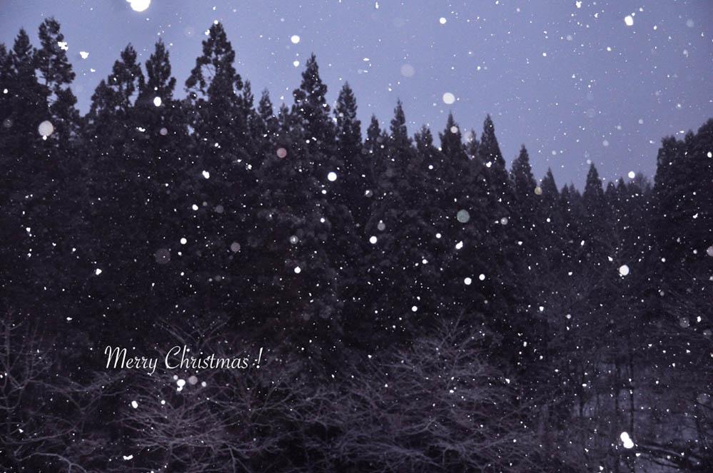 ホワイト☆クリスマス_e0162117_1811124.jpg