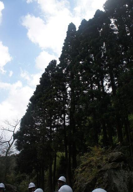 出雲の旅 (2) 石見銀山世界遺産センターの石見銀山ツアー_c0011649_22243989.jpg