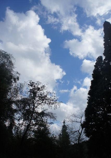 出雲の旅 (2) 石見銀山世界遺産センターの石見銀山ツアー_c0011649_2227422.jpg