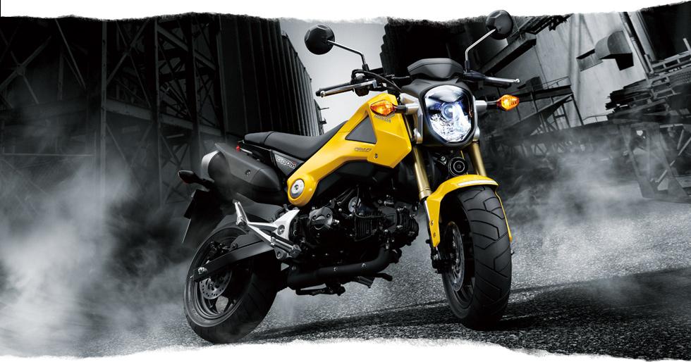 来年はGROMのバイクザシートインサイドかな_e0114857_21112265.jpg