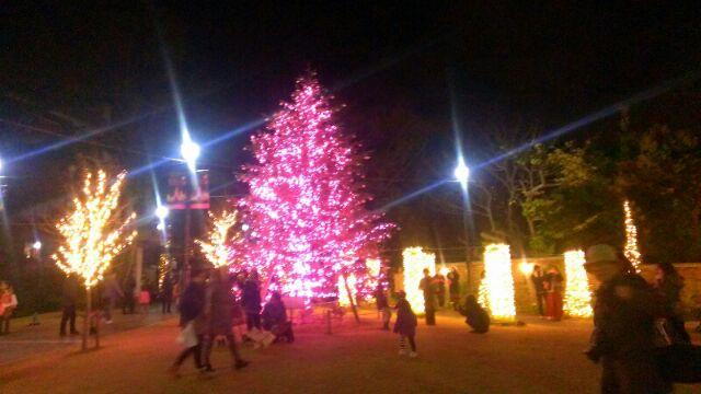 メリークリスマス!_e0172872_22483147.jpg