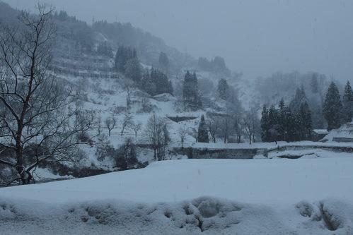 雪国_a0025576_17555168.jpg