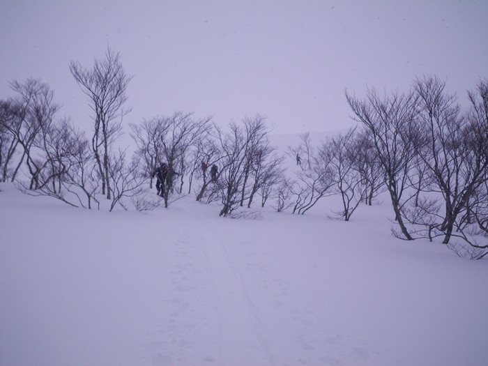 ホワイトアウトの湯殿山 ~ 2013年12月23日_f0170180_22421363.jpg