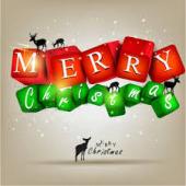 穏やかなる merry christmas! _a0050302_2585773.jpg