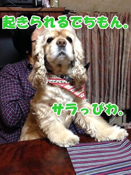b0067012_1234656.jpg