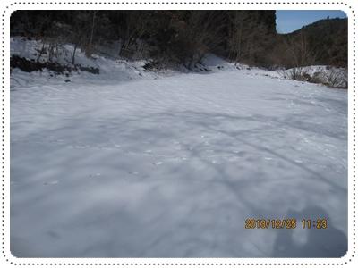 f0193521_19543840.jpg