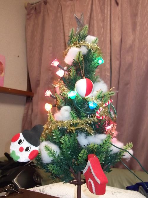 クリスマスです!_f0304030_2295622.jpg