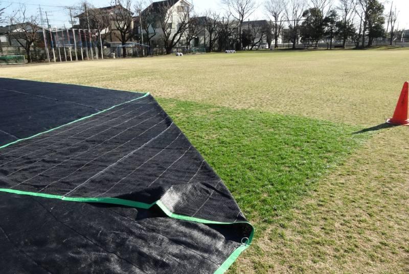 芝生のシート掛け_f0059673_18281013.jpg