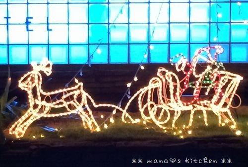 Merry Christmas! ☆ bento&bangohan♪_c0139375_120368.jpg