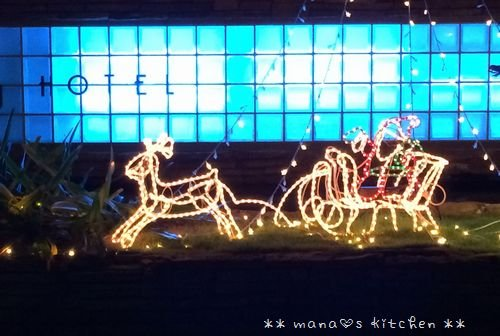 Merry Christmas! ☆ bento&bangohan♪_c0139375_1205298.jpg