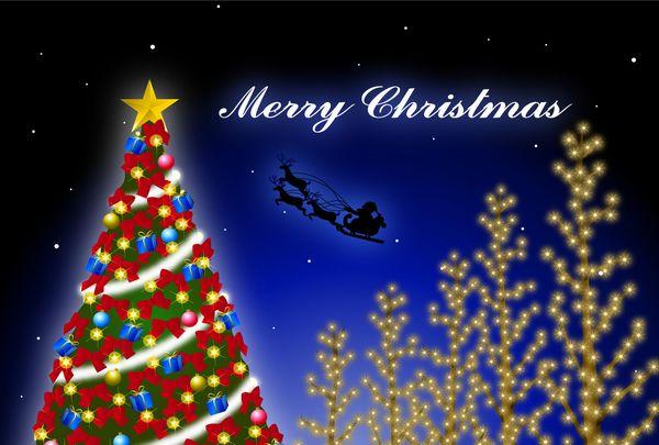 Merry Christmas! ☆ bento&bangohan♪_c0139375_122378.jpg