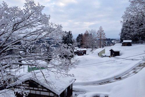 雪の朝_a0025576_15521863.jpg
