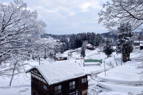 雪の朝_a0025576_1552195.jpg