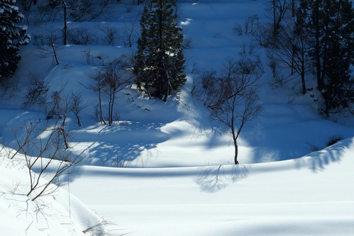冬の棚田_a0025576_21523265.jpg