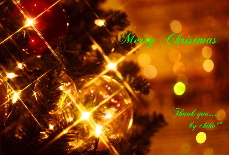 Christmas Last Postcard~☆_e0221779_15133491.jpg