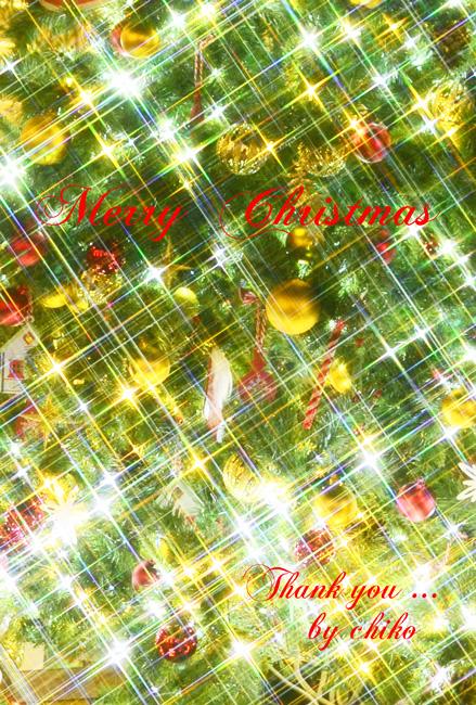 Christmas Last Postcard~☆_e0221779_15213920.jpg